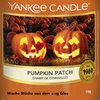 Pumpkin Patch Wax Crumbs 22g