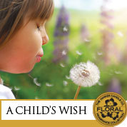 13Q1A_Childs_Wish
