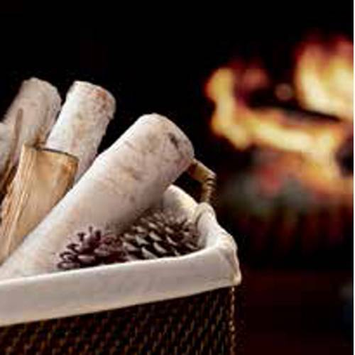 Crackling_Wood_Fire_Icon